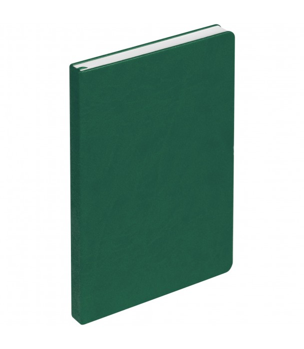 Ежедневник New Brand недатированный, зеленый Адъютант
