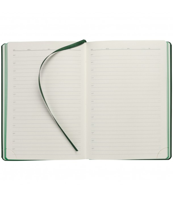 Ежедневник SHALL недатированный, зеленый Адъютант