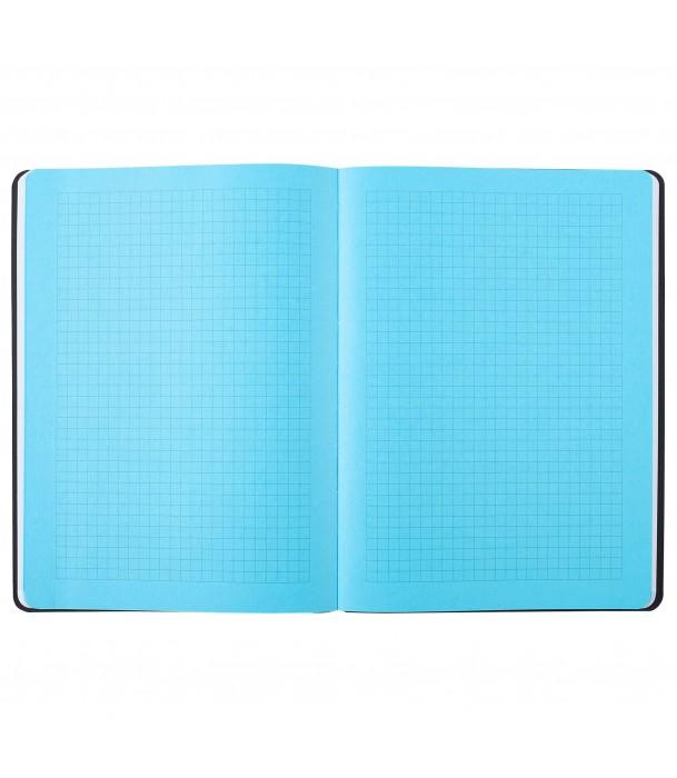 Записная книжка в клетку/линейку, синяя- «Турецкие огурцы» Адъютант